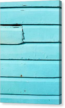 Blue Wood Canvas Print by Tom Gowanlock