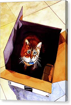 #260 Cat In The Box Canvas Print by William Lum