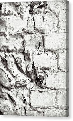 Stone Wall Canvas Print by Tom Gowanlock