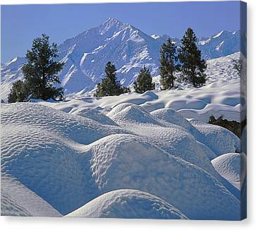 2m6402 Mt. Tom From Sherwin Grade Canvas Print