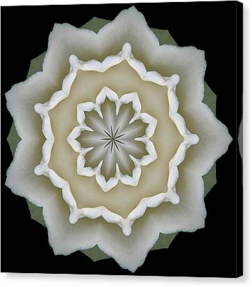 Canvas Print featuring the photograph 9 Petaled Design by Baha'i Writings As Art