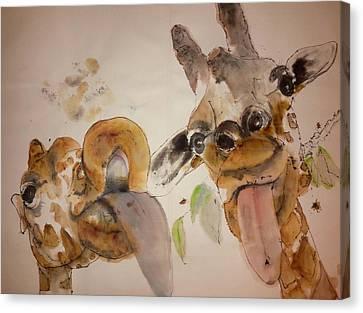 A Camel Story Album Canvas Print