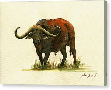 African Buffalo Watercolor Painting Canvas Print by Juan  Bosco