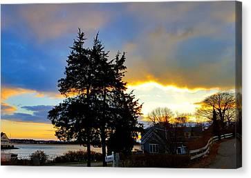 Annisquam Winter Sunset Canvas Print by Harriet Harding