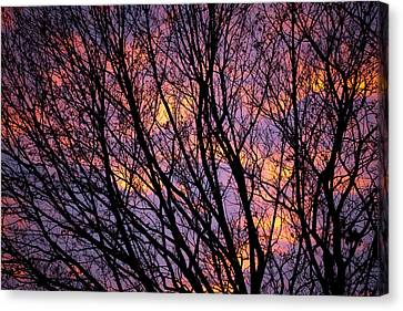 Autumn Sky Canvas Print
