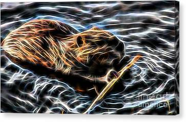 Beaver Collection Canvas Print