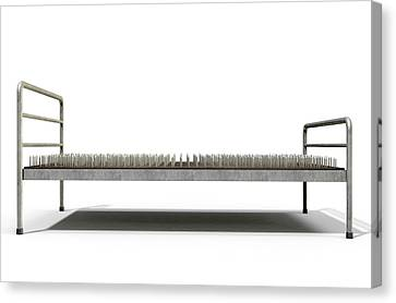 Bed Of Nails Isolated Canvas Print by Allan Swart