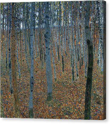 Beech Grove I Canvas Print