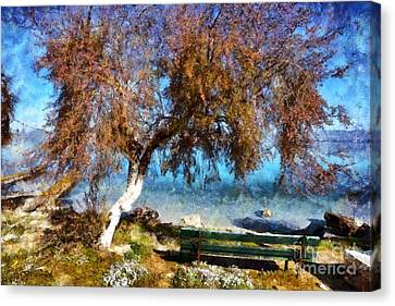 Bench By The Seaside During Springtime Canvas Print by George Atsametakis