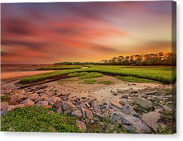 Canvas Print featuring the photograph Big Talbot Island by Peter Lakomy
