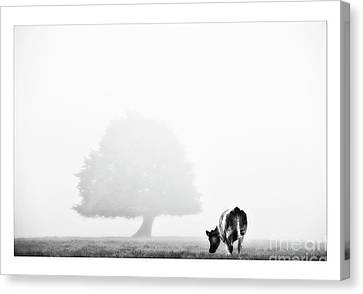 Black And White Nature Landscape Photography Art Work Canvas Print by Marco Hietberg