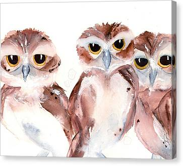 3 Burrowing Babies Canvas Print
