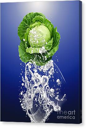 Cabbage Canvas Print - Cabbage Splash by Marvin Blaine