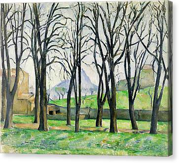 Chestnut Trees At Jas De Bouffan  Canvas Print by Paul Cezanne