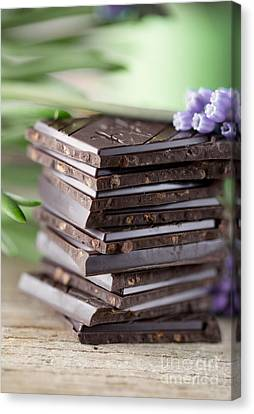 Chocolate Canvas Print by Nailia Schwarz