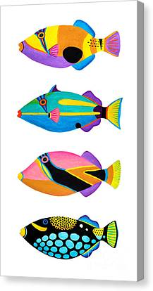 Collection Of Trigger Fishes Canvas Print