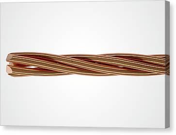 Copper Wire Strands Canvas Print by Allan Swart