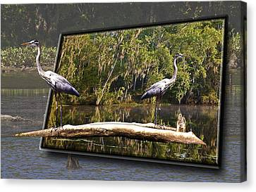 3-d Great Blue Crane Canvas Print by Michael Whitaker