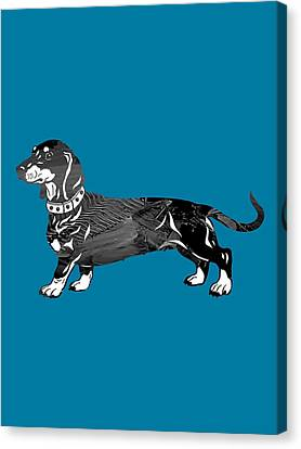 Dachshund Collection Canvas Print by Marvin Blaine