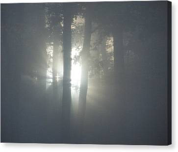 Daybreak Of Creation Canvas Print
