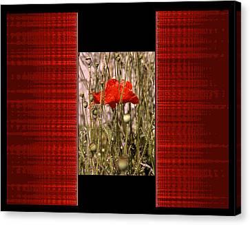 Digital Artistry Canvas Print
