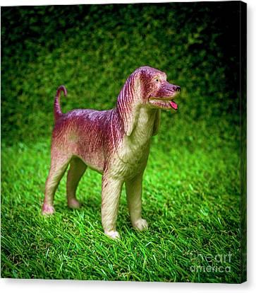 Toy Animals Canvas Print - Dog Figurine by Bernard Jaubert