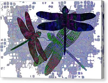3 Dragonfly Canvas Print