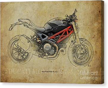 Ducati Monster 796 2013 Canvas Print by Pablo Franchi