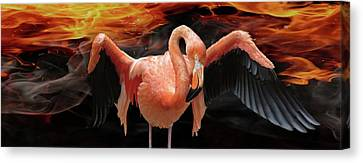 Hot Pink Custom Canvas Print - Flame-colored by Melanie Kowasic