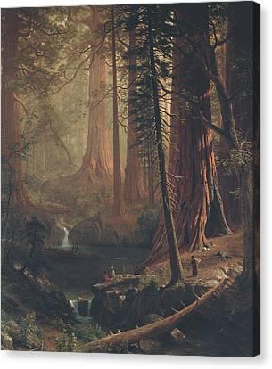 Giant Redwood Trees Of California Canvas Print by Albert Bierstadt