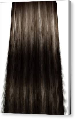 Hair Perfect Straight Canvas Print