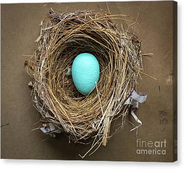 Pine Needles Canvas Print - Home Sweet Home by Edward Fielding