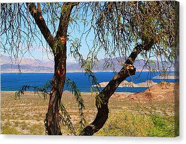 Hoover Dam Visitor Center Canvas Print by Kathryn Meyer
