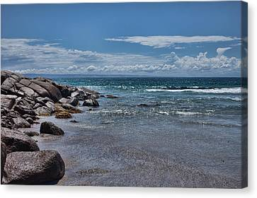 Kangaroo Island Canvas Print by Annela Christie
