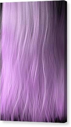 Length Of Hair Canvas Print