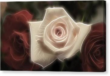 3 Little Roses For Patrice Canvas Print by Kevin  Sherf