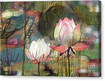 Lovely Waterlilies Canvas Print by Amy Cicconi