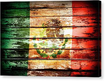 Mexican Flag Canvas Print by Les Cunliffe