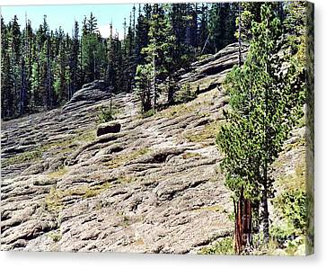 Canvas Print featuring the photograph Mount Baldy Trail by Juls Adams