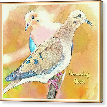 Mourning Dove Pair  Canvas Print