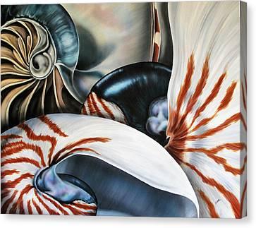 3 Nautilus Canvas Print