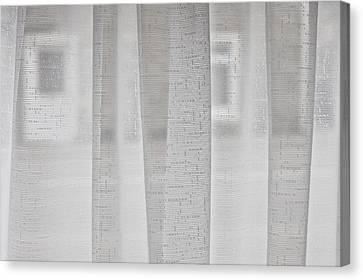 Net Curtain Canvas Print by Tom Gowanlock