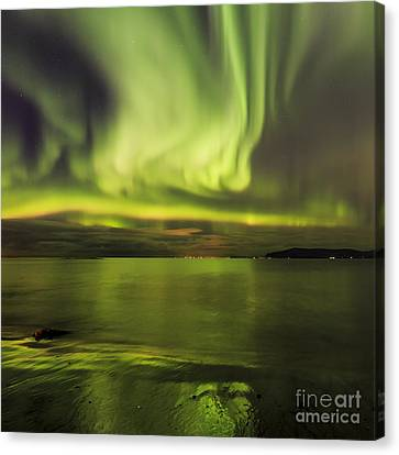 Northern Lights Reykjavik Canvas Print
