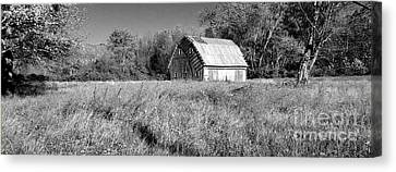 Old Barn In The Meadow Canvas Print by Scott D Van Osdol