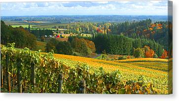 Oregon Wine Country Canvas Print by Margaret Hood