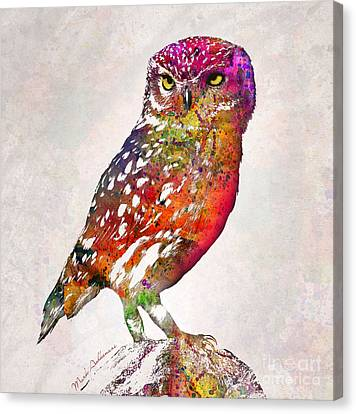 Caricature Canvas Print - Owl  by Mark Ashkenazi
