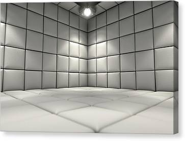 Padded Cell Canvas Print by Allan Swart