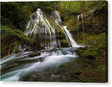 Panther Creek Falls Canvas Print by David Gn