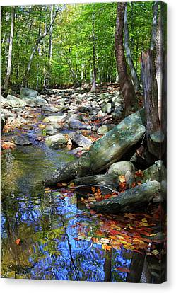 Canvas Print featuring the photograph Peace by Mitch Cat