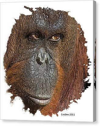 Pensive Primate Canvas Print by Larry Linton